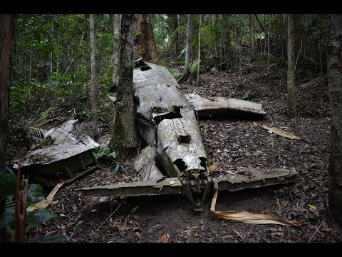 Finding a Plane Crash Site in Australian Forest and LEECHES!