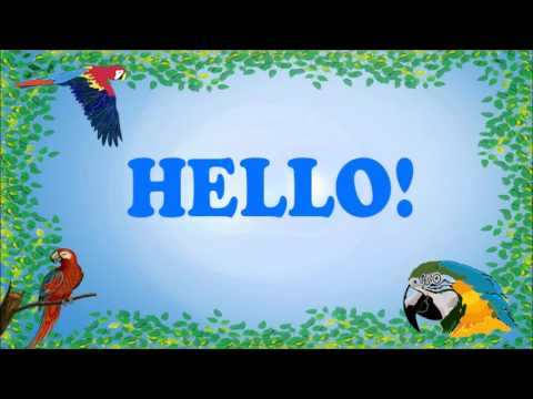 Teach your Parrot to say Hello!