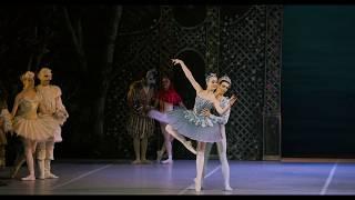 My First Ballet: Sleeping Beauty – Bluebirds (Extract) | English National Ballet