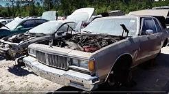1984 Pontiac Parisienne at ACE Pick-A-Part junkyard in Jacksonville, FL