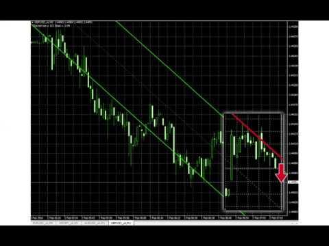 raportul euro dollar privind forex