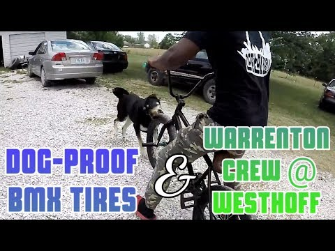 Dog-Proof BMX Tires / Capital Crew & Friends Ep. 9
