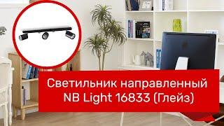 Светильник направленный NB LIGHT 16833 (NB LIGHT 13703-cl116-pla000-cp000 Глейз) обзор