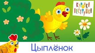 Цыплёнок - КУРОЧКА-ПЕСТРУШКА Развивающая песенка мультик для детей малышей