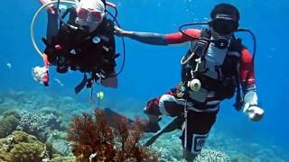 Download Video keindahan taman laut Bunaken MP3 3GP MP4