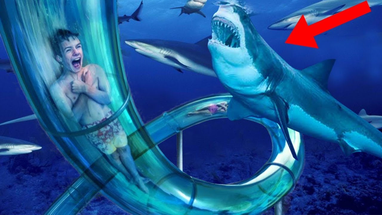 Download Most INSANE Water Slides In The World!