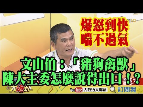 【精彩】爆怒到快喘不過氣!文山伯:陳大主委「豬狗禽獸」怎麼說得出口!