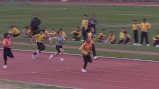 Publication Date: 2017-03-28 | Video Title: 佐敦道官立小學16-17年度運動會 GIRLS P.3&4