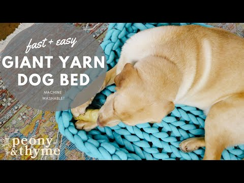 How to Knit a Giant Yarn Dog Bed-Machine Washable! - YouTube
