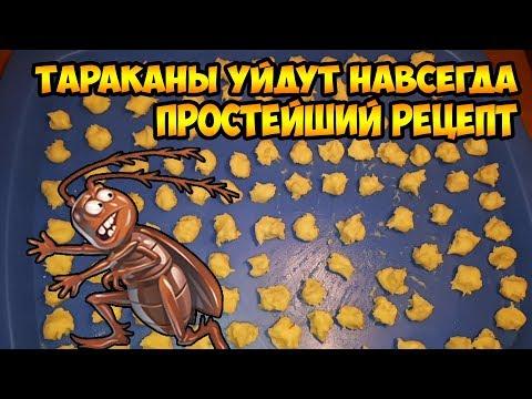 Тараканы уйдут навсегда. Простейший рецепт