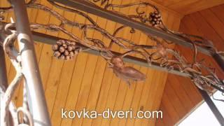 Кованый виноград. Виноградные грозди, кованая виноградная лоза и листья, ковка(http://kovka-dveri.com/raznoe_vinograd.HTML - кованые грозди винограда, кованая виноградная лоза, кованые виноградные листья...., 2011-03-21T21:39:37.000Z)