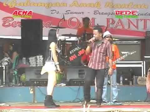 PANTURA Gala gala  Reza lw 1000