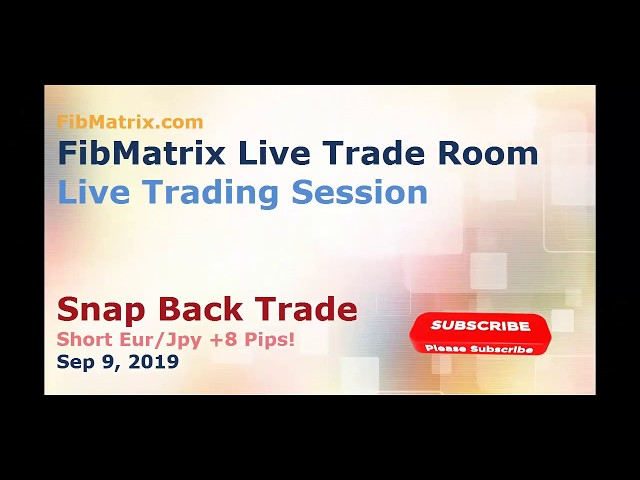 FibMatrix Live Online Forex Trade Room Snap Back Trade 8 pips