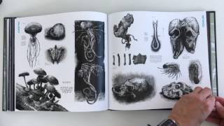 Art an Making of Alien Covenant - QuickLook/CoolBook -