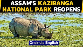 Kaziranga Park reopens for tourists after being shut for almost 7 months|Oneindia News