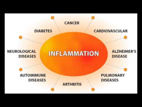 Stress, Inflammation & Chronic Disease