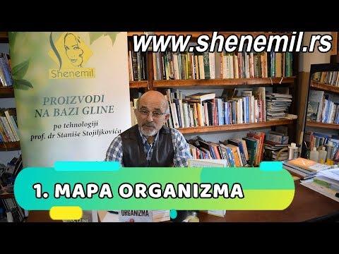 1. MAPA ORGANIZMA - Ekologija organizma sa Prof. dr Stanišom Stojiljkovićem