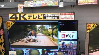 4K大型液晶テレビの性能は? 液晶テレビ 検索動画 21