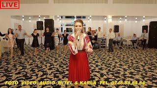 Descarca Ana Maria Oprisan, Nunta Colaj Hore si Sarbe - Live 2020