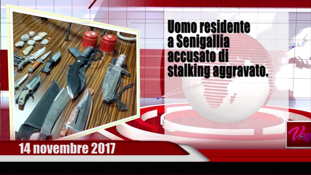 Notizie Senigallia WebTv del 14 11 17