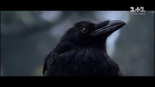 """Легенди не вмирають - фільм """"Чорний ворон"""" незабаром у кінотеатрах"""