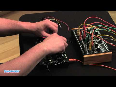 Moog Werkstatt Analog Synth Demo By Daniel Fisher