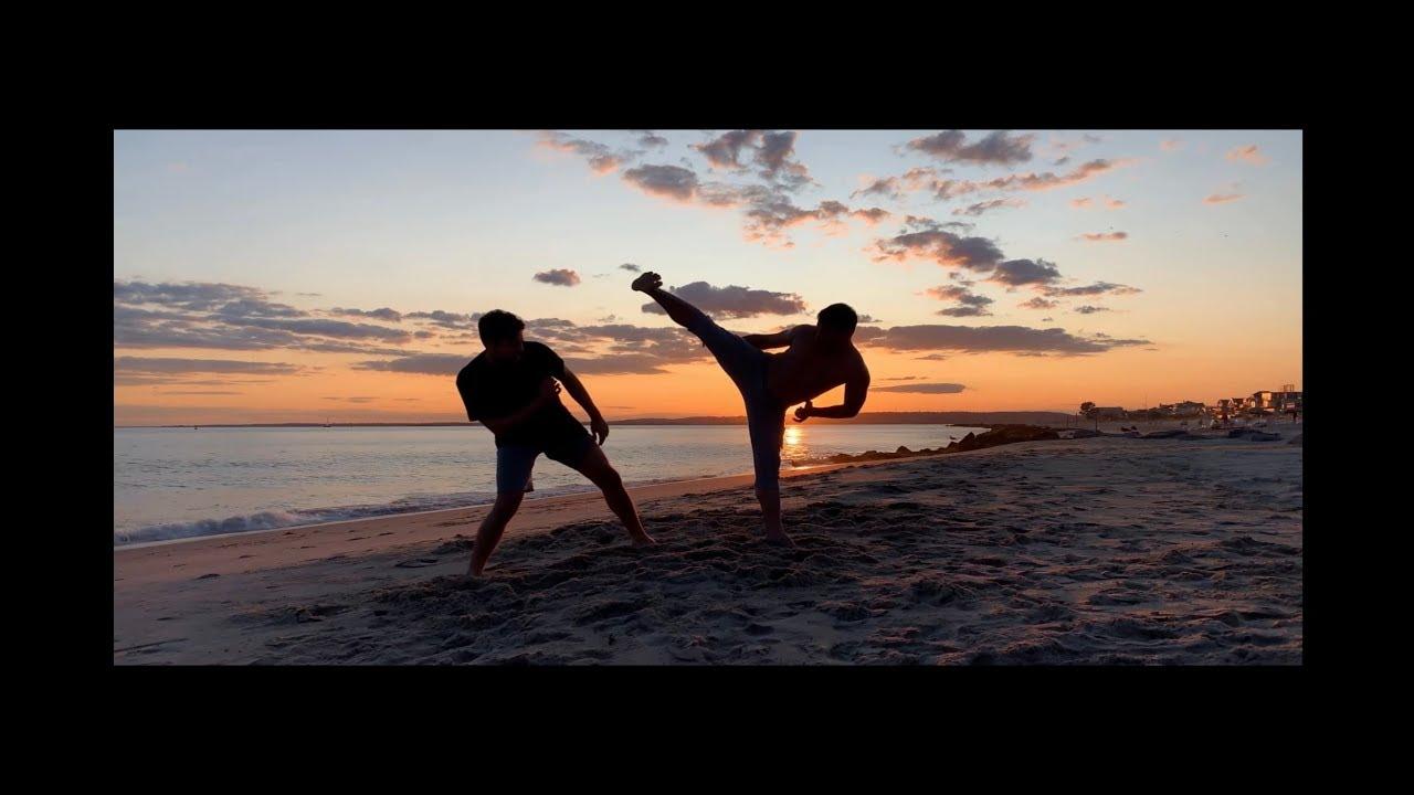 Alex Lee Training System/System Martial Arts/ Kicks train