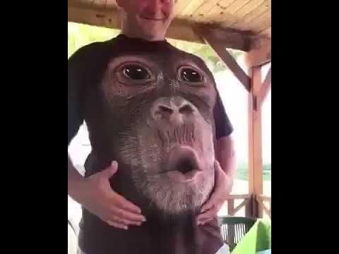 Monkey 3D T Shirt