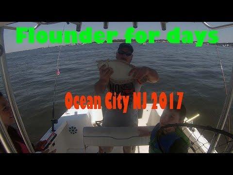 Flounder for days in ocean city nj back bays