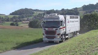 Anicom SA: Nouvelles solutions dans le transport des animaux