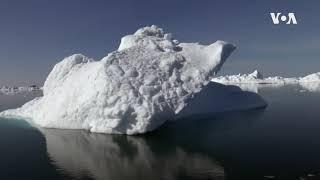 南极海冰骤减 科学家不明所以