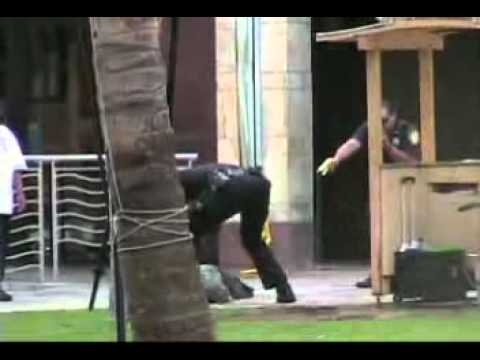 Honolulu police taser