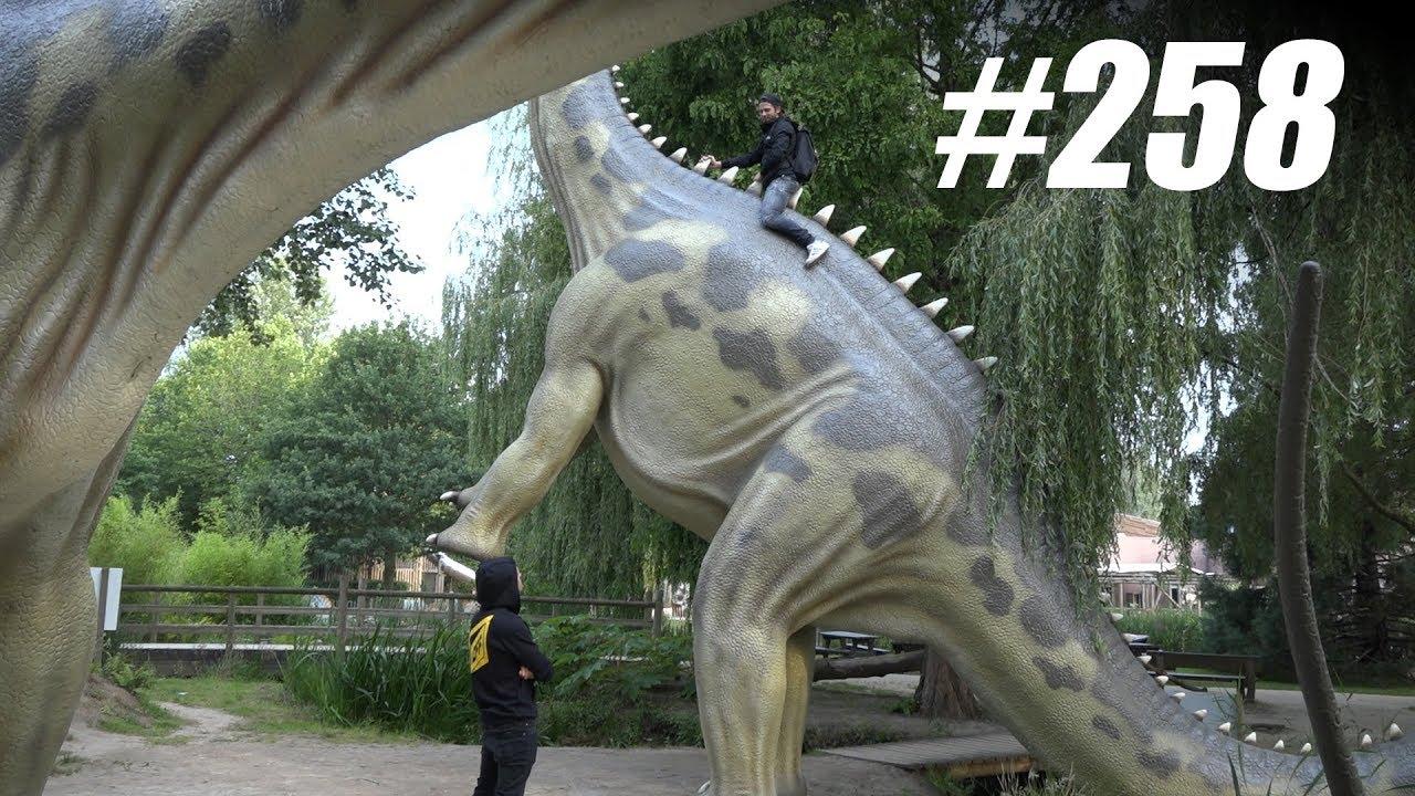 Image Result For Dinosaurus