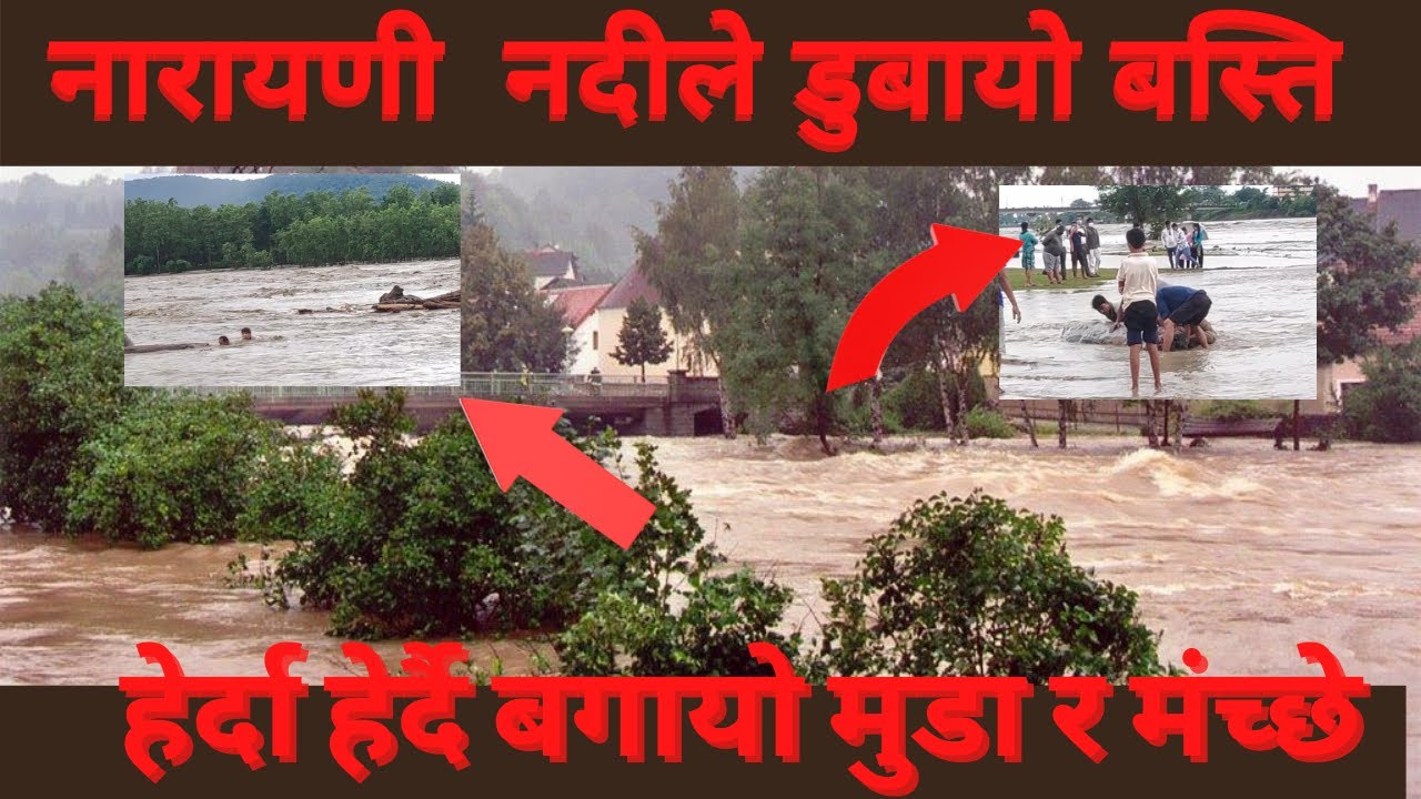 Download Narayani River Floods | Narayani river 2021 | 50 बर्ष कै ठुलो भेल नारायणि नदिमा 2078