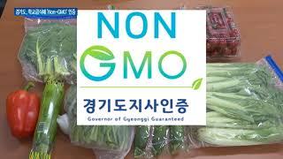 학교급식 가공식품 'Non-GMO' 인증 표시 의무화 …