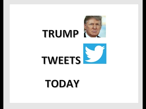 Trump Tweets Today -- 2/15/2017 edition