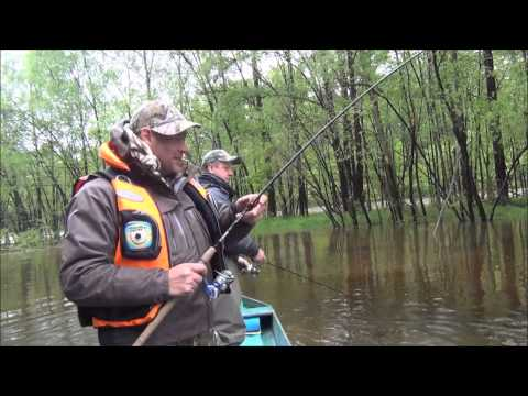 рыбалка на тайменя в июне