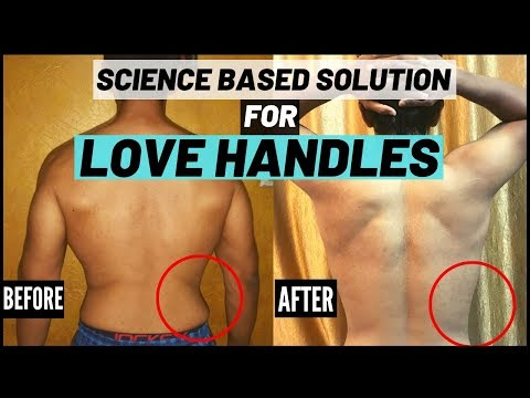 REDUCE LOVE HANDLES / SIDE FAT | Science based Exercises/Workout to LOSE IT | thebigfatFIT