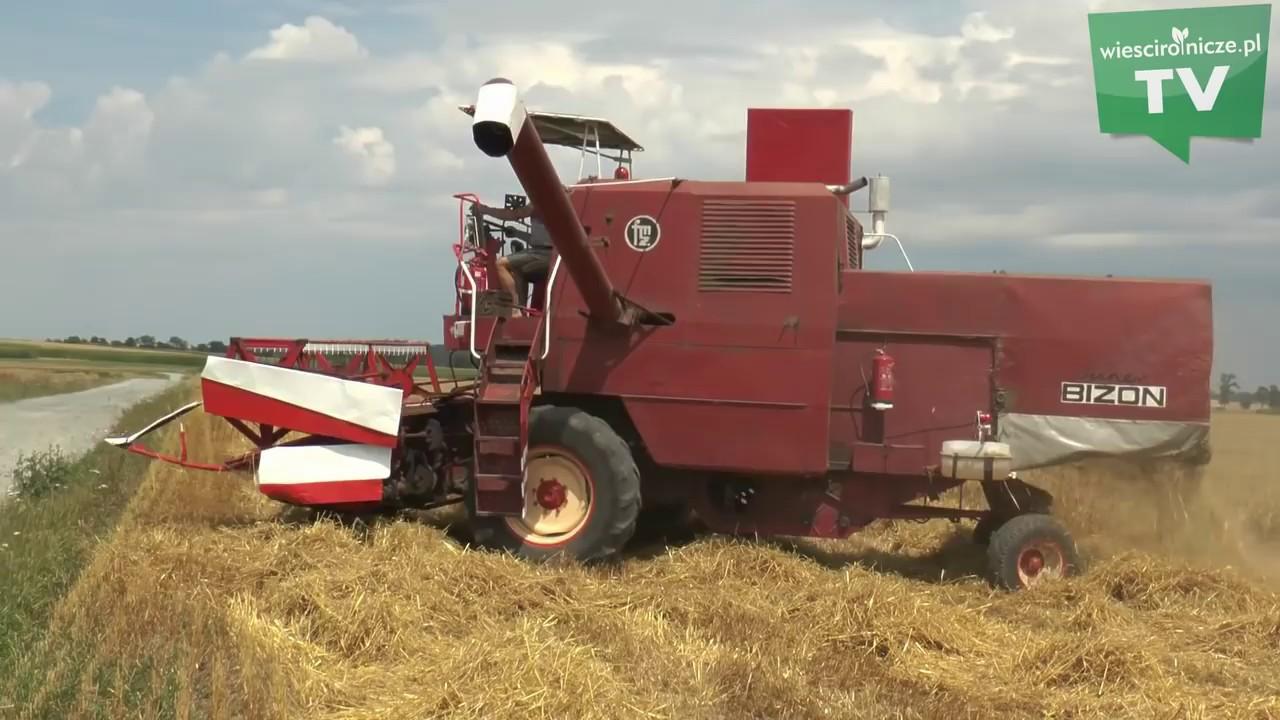 Download Żniwa 2018. Bizon w akcji. Jak sypią zboża? Co i kiedy zbierają rolnicy?