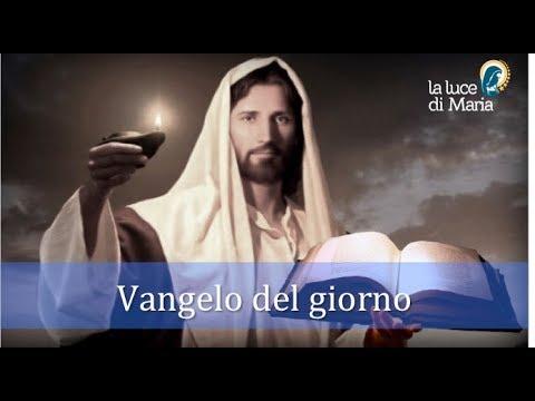 Il Vangelo del giorno Mercoledì 14 Novembre dal Vangelo secondo Luca commentato dal Papa