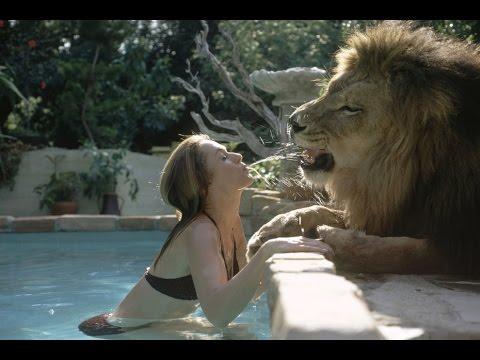 Löwen behandeln Frau wie ihre Führer und Meister!!!