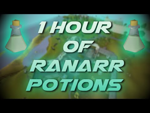 Making Ranarr Potions | Testing OSRS Wiki Money Making Methods
