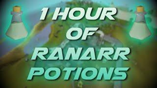 Making Ranarr Potions  Testing OSRS Wiki Money Making Methods