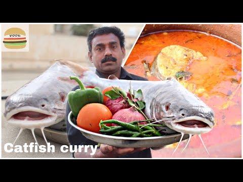 King Catfish Curry Kerala Style!!!!! Village Food