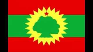Hacaalu Hundessa new oromo song 2013 emmole yaa garba cisaa