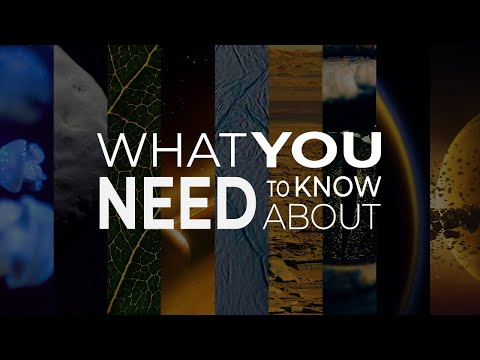 What You Need to Know from NASA