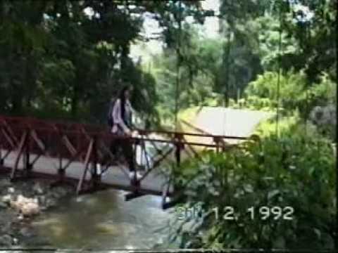 Bogor (Buitenzorg) 1993