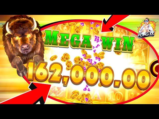 🏆 #LuckyNiki 🏆 : Buffalo Rising  แสนเลยรึทุกโคนน !!