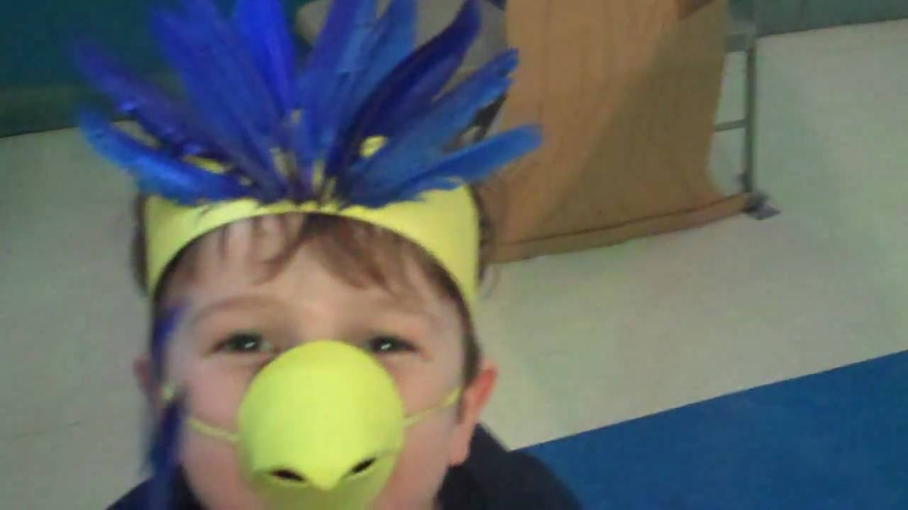diy bird costume