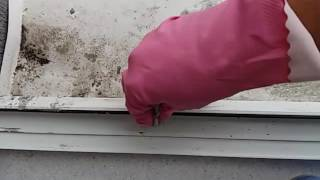 видео Мытье, мойка окон, очистка фасадов, ремонт и реставрация фасада